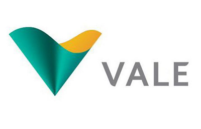 9 Vale do Rio Doce Large Mining company